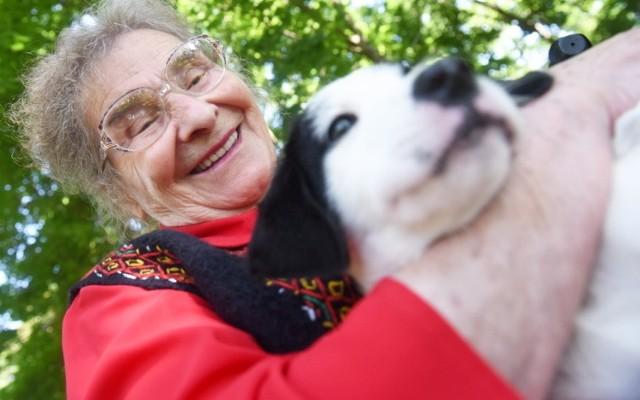 27 lipca 2021 r. przypadał Dzień Osób Samotnych. I tego dnia w zielonogórskim Domu Kombatanta przy ul. Lubuskiej pojawili się… Selena, Plamcio i Staś. Wraz ze swoimi opiekunami z OTOZ Animals - Schronisko dla Bezdomnych Zwierząt w Zielonej Górze