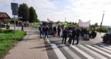 Sadownicy z grójeckiego będą pikietowali biuro Jeronimo Martins, właściciela sieci Biedronka. Protestują przeciw umowom całosezonowym