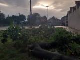 Nawałnica nad Lubelszczyzną. Zobacz krajobraz po burzy