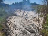 Pożar torowiska w okolicach Grzmiąca. Wielkie siły użyte w akcji gaśniczej [zdjęcia]