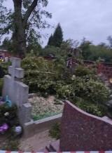Afera na witkowskim cmentarzu – czy zdewastowano nagrobki (?) Facebook wrze, media poinformowane, a ze źródłem brak kontaktu [FOTO]