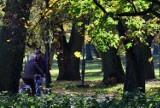 Polska złota jesień w Kujawsko-Pomorskiem na przepięknych zdjęciach