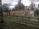Widok z okien pociągów jadących przez Toruń. Niektóre miejsca mogą zaskoczyć