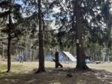 Z Wałbrzycha na Kalenicę. Wycieczka na jeden z najwyższych szczytów Gór Sowich. Zobaczcie zdjęcia!