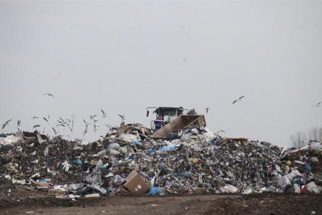 Od 2021 r. mieszkańcy Opola mają więcej zapłacić za odbiór śmieci. W ciągu roku opłaty mogą się jeszcze zmienić