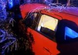Dwa auta rozbite. Dwie osoby w szpitalu. DK 87 zablokowana w Barcicach