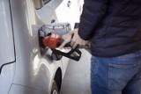 Paliwo idzie w górę. Ile płacimy dziś w Zielonej Górze? Podajemy ceny paliw na stacjach w mieście