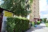 Szczury w mieszkaniu na Podkarczówce w Kielcach. Zdaniem mieszkańców administracja zareagowała opieszale (ZDJĘCIA)