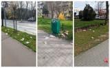 Mnóstwo śmieci w pobliżu McDonald'sa w Słupsku. Straż Miejska zapowiada interwencję [ZDJĘCIA]