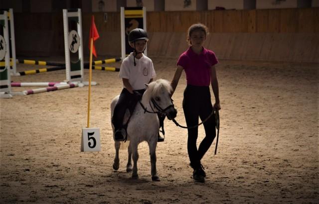 W niedzielę do Zakrzowa w gminie Polska Cerekiew przyjechało blisko 200 uczestników, którzy wzięli udział w Biegu Europejskim, Marszu Europejskim oraz Igrzyskach Pony.