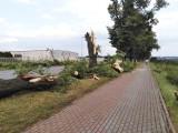 Strażacy z powiatu kwidzyńskiego wyjeżdżali do usuwania 35 wiatrołomów. Doszło także do uszkodzenia dachów trzech budynków