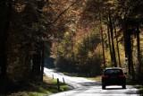 Bezpieczeństwo na drodze. Jak przygotować auto do jesiennych podróży - radzą policjanci