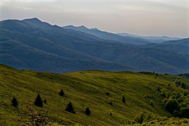 Szlak biegnący granią Bukowego Berda niektórzy uważają za jedną z najpiękniejszych tras w Bieszczadach. To jeden plus. Do kolejnych zaliczyć trzeba to, że rozpościerające się stąd widoki są oszałamiające (zdjęcia oczywiście tego nie oddają), a połoniny w masywie Bukowego Berda nie są tak oblegane, jak Wetlińska czy Caryńska.