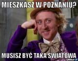 Najlepsze memy o Poznaniu. Zobaczcie jak internauci komentowali nasze miasto [MEMY]
