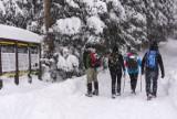 Tatry. Czwarty stopień zagrożenia lawinowego nie wystraszył turystów [ZDJĘCIA]