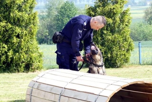 Policyjne psy z opolskiego garnizonu.