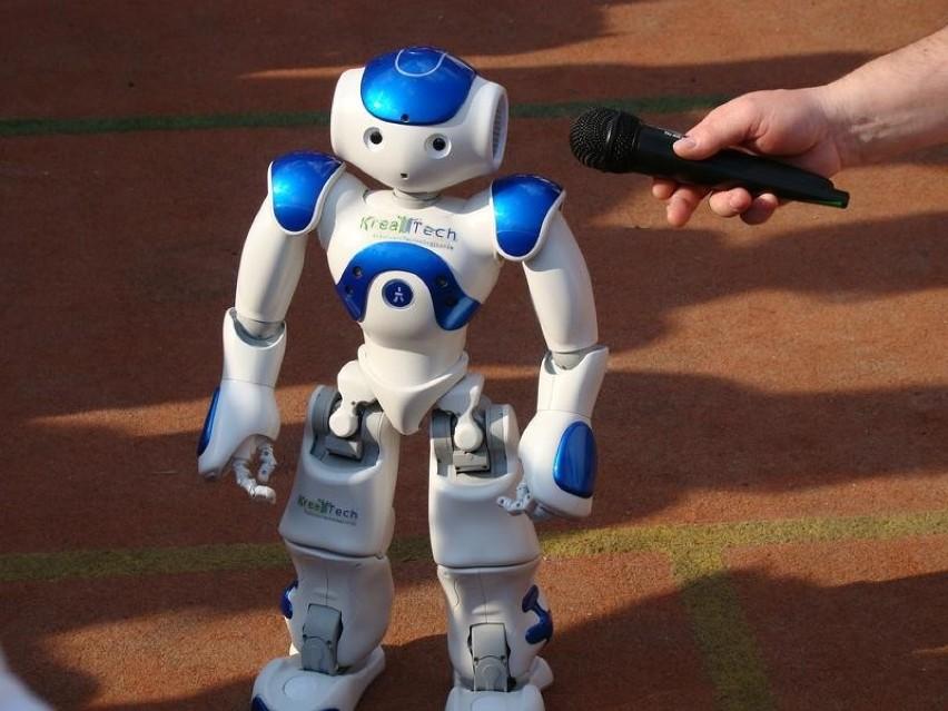 Robot Nao na pikniku w Oświęcimiu