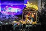 Szamotuły. Urokliwa szopka bożonarodzeniowa w kościele pw. Świętego Krzyża [ZDJĘCIA]