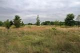 Kraków. Walczą o park zamiast pola golfowego na Białych Morzach