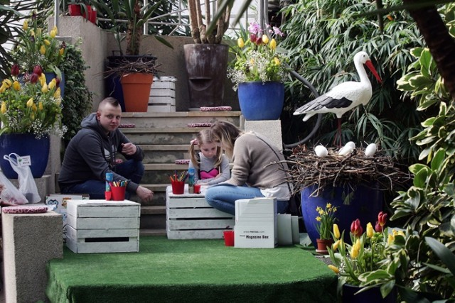 Witamy Wiosnę w Legnickiej Palmiarni