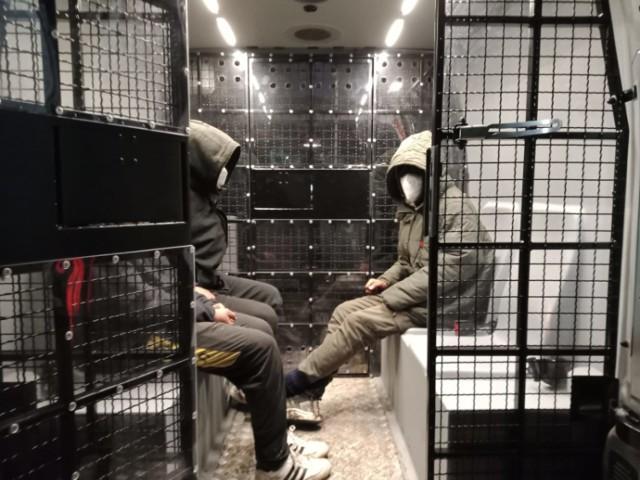 Nielegalni imigranci ukryci w ciężarówce. Akcja policji z Pawłowic i pograniczników