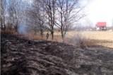 W Łączanach i Kossowej znowu ktoś podpalił trawę! Strażacy walczyli z ogniem [Zdjęcia]