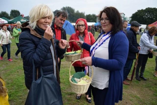 Powiat nowodworski. W regionie rozpoczyna się czas tradycyjnych dożynek. Jako pierwsi świętować będą mieszkańcy gminy Stegna i Sztutowo.