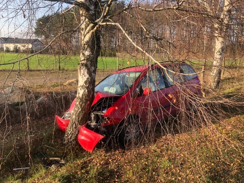 Wypadek w Cichej Górze. Pijany kierowca uderzył w drzewo. Zobaczcie zdjęcia