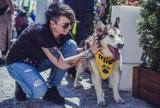 Wspieramy zwierzaki. Ty też przyłącz się do naszej akcji - weź udział w KONKURSIE i zgarnij wspaniałe nagrody! [KONKURS ZAKOŃCZONY]
