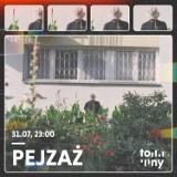 Festiwal Tony w Rzeszowie z kolejnymi gwiazdami. W sobotę zagra Pejzaż i The Very Polish Cut-Outs