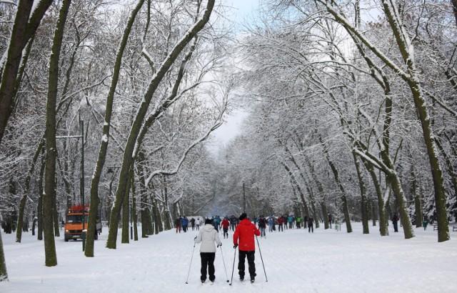 """Trasa """"Hipodrom"""" jest jedną z pierwszych na Mazowszu profesjonalnych tras do uprawiania narciarstwa biegowego. Idealna jest do trenowania biegów stylem klasycznym. Bieg odbywa się na przygotowanych torach po wyznaczonej trasie. Oczywiście to także doskonałe miejsce do pieszych spacerów."""