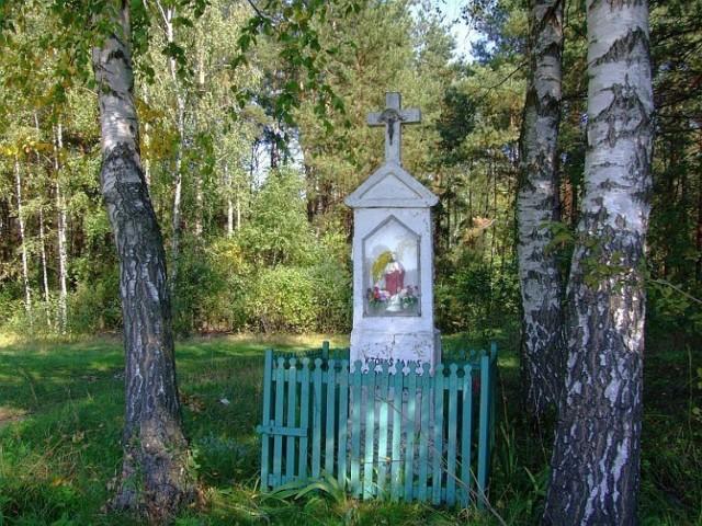 Ta kapliczka stoi w lesie przy drodze między Przesmykami a Zawadami na Podlasiu. foto . Grzegorz