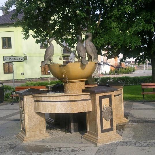 Fontanna - Kormorany