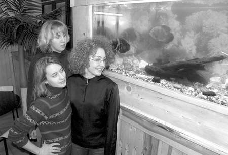 Maturzystkom z IVd sumiki i pielęgnice wyraźnie poprawiają humor. Na zdjęciu od lewej: Julia Armata, Agnieszka Roskosz i Agata Przecherka. Fot: Sylwester Witkowski