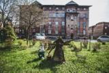Dzielnica Ligota - najbardziej kolorowa w Katowicach? Zobacz fotoreportaż Marzeny Bugały z DZ
