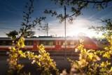 Ruszyła produkcja 21 nowoczesnych pociągów dla warszawskiej Szybkiej Kolei Miejskiej. W środku m.in. Wi-Fi i ładowarki USB