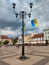 Flagi górnośląskie na rybnickim rynku [ZDJĘCIA]