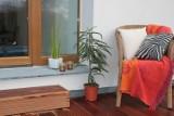 Powiat szamotulski. Mieszkańcy pochwalili się swoimi ogrodami i balkonami