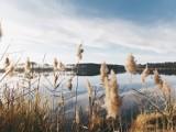 TOP 5 najpiękniejszych i mało uczęszczanych jezior na Lubelszczyźnie. Sprawdź gdzie warto pojechać w weekend