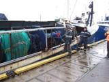 Kompromis w sprawie rybołówstwa. Unijna polityka rybacka budzi emocje
