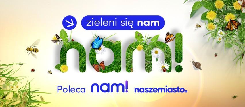 Naszemiasto.pl - największa w Polsce sieć miejskich portali informacyjnych