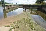 Niski stan wody w Odrze. Zefir nie przypłynie do Krosna?