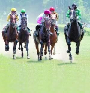 Zapalonych koniarzy zapraszać na wyścigi nie trzeba. Są na nich niezależnie od wszystkiego. Ale kiedy pogoda dopisuje, na Partynice przychodzą prawdziwe tłumy. Naprawdę warto.  fot. janusz wójtowicz