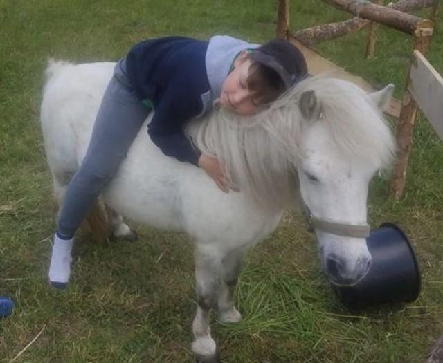 Zwierzyniec Starzyno - tu dzieci mają okazję obcować ze zwierzętami