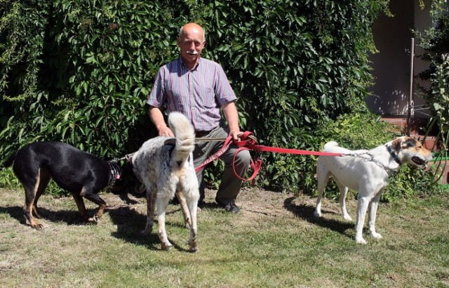 Pan Damazy w swoim ogrodzie odpoczywa i spaceruje z psami.